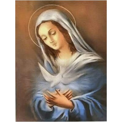 MARIA FERNÁNDEZ ROSAS